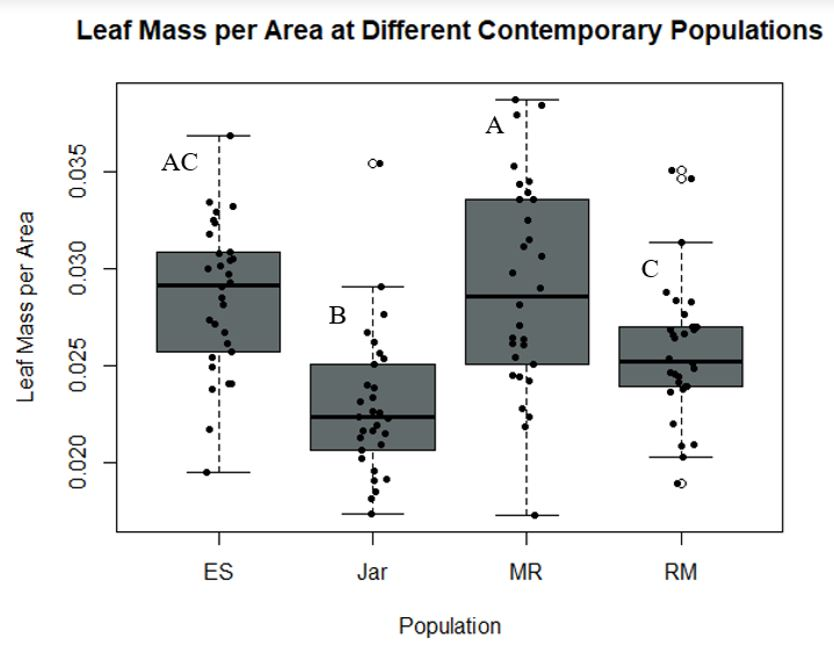 Figure 2 - Leaf Mass per Area at DIfferent Contemporary Populations