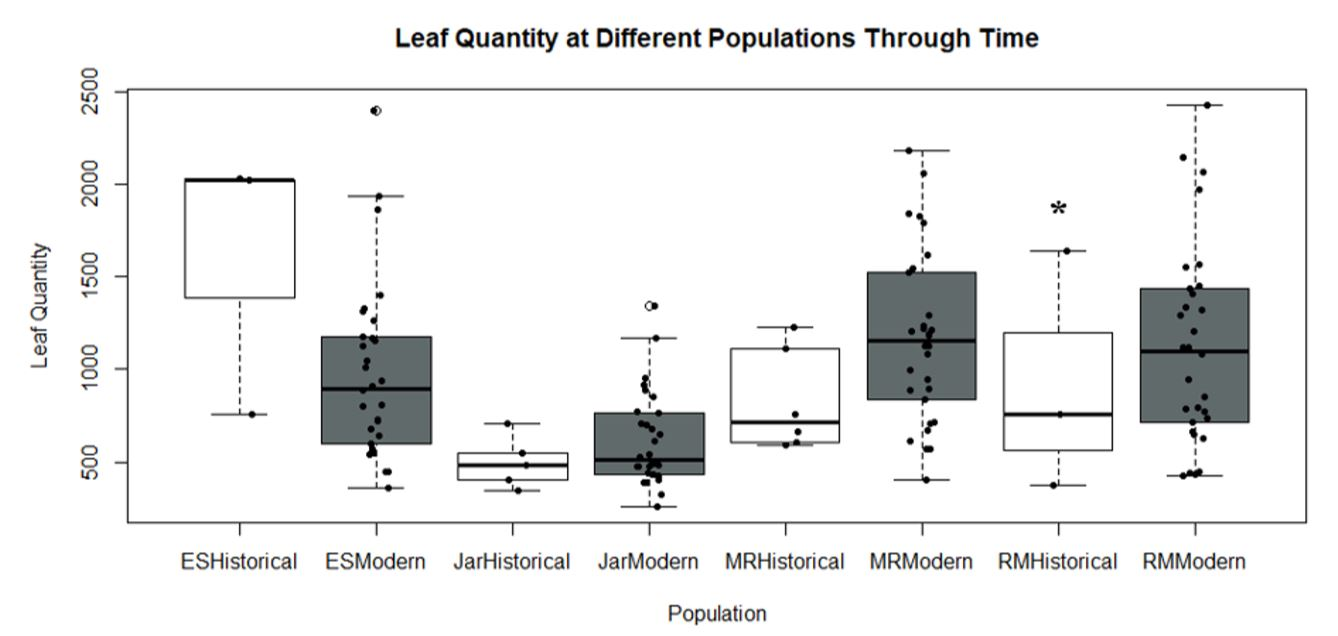 Figure 3 - Leaf Quantity at Different Populations Through Time